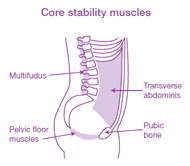 Core Stablity Illustration